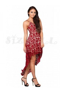 "THE ""GIA"" FLORAL LACE NUDE ILLUSION HI-LOW HEMLINE LUXE DRESS.... BURGUNDY..."