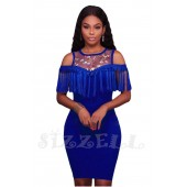 "THE ""BRENDA"" FLORAL MESH FRINGE BODYCON LUXE DRESS...  ROYAL BLUE..."