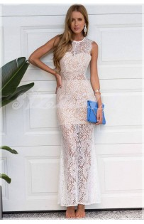 """THE """" STYLE STAR"""" LACE NUDE LUXE DRESS...."""